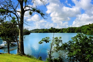 Gatun Lake on a Panama Canal Cruise