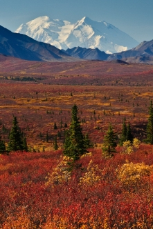 Mt McKinley in Alaska
